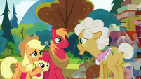 "Applejack ""we were hopin' you could tell us"" S7E13"