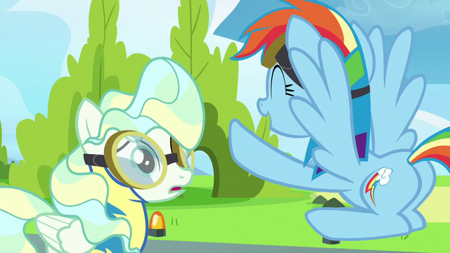 "File:Rainbow Dash ""you were awesome!"" S6E24.png"