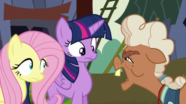 File:Ma Hooffield asks who Twilight and Fluttershy are S5E23.png