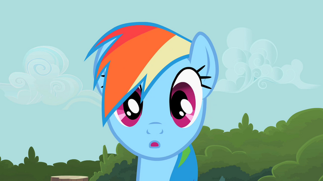 File:Rainbow Dash wait minute S2E8.png