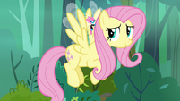 Fluttershy slows down for Seabreeze S4E16