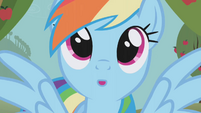 Rainbow Dash day dreaming S1E3