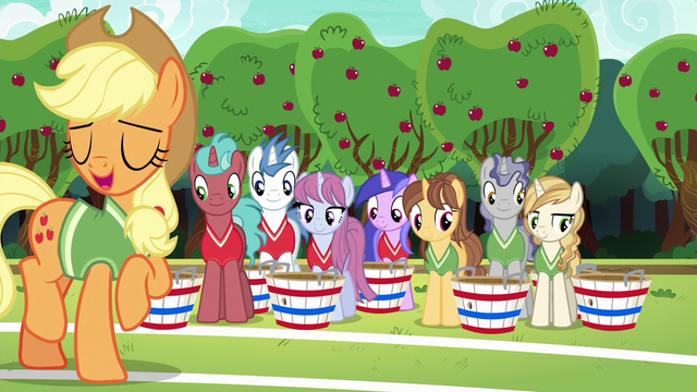 File:Applejack explains the unicorns' role in buckball S6E18.png