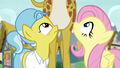 Fluttershy and Dr. Fauna look up at giraffe S7E5.png