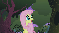 Fluttershy in the Everfree forest S1E17