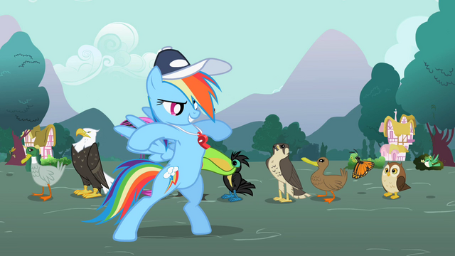 "File:Rainbow Dash ""Guts!"" S2E07.png"