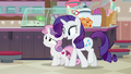 "Rarity ""excited to be back here"" S7E6.png"