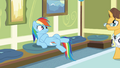 Doctor approaches Rainbow Dash S2E16.png