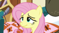 Fluttershy smiling in relief S5E21.png