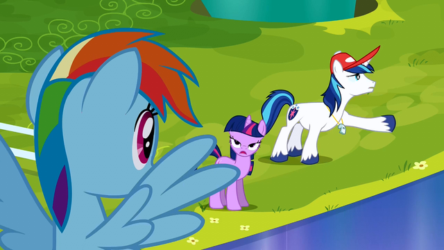 File:Shining Armor explaining that the Crystal Ponies got hurt S3E12.png