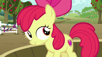 Apple Bloom looks at other ponies S6E4