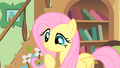 "Fluttershy ""running out of time?"" S01E22.png"
