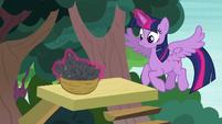 Twilight Sparkle making a basket of leaves S7E5