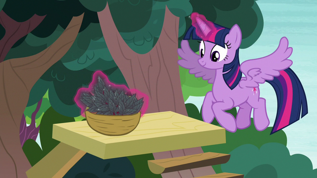 File:Twilight Sparkle making a basket of leaves S7E5.png