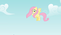 Fluttershy sees Rainbow Dash fall S4E04.png