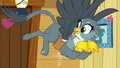 Gabby looking at her haunches S6E19.png