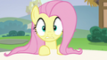 Fluttershy hears Rarity call her name S6E21.png
