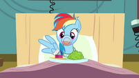 Rainbow Dash stuck S02E16