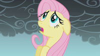 Fluttershy frightened mid-flight S1E07