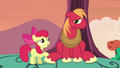 Apple Bloom offers to listen S5E17.png
