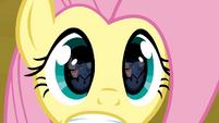 Fluttershy's eyes S02E19