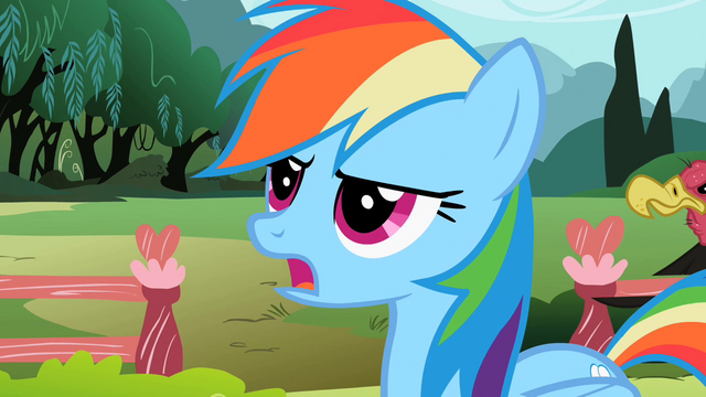 File:Rainbow Dash 'utmost importance' S2E07.png