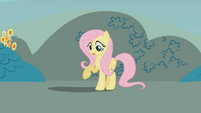 Fluttershy looks at her shadow S1E07