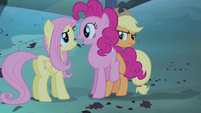 Pinkie Pie butting in S4E07