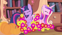 Flowers landing onto Twilight and Cadance S4E11