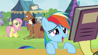 Fluttershy looking at Rainbow Dash S4E22