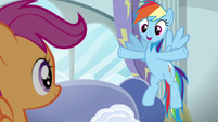 """Rainbow """"every town in Equestria has one"""" S6E14"""