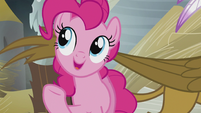 "Pinkie explains ""replace it with something better!"" S5E8"