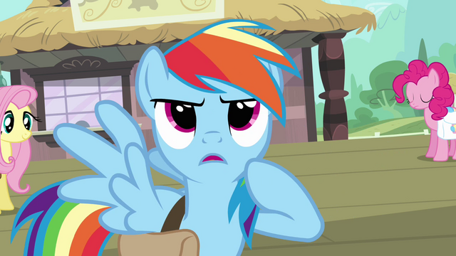 File:Rainbow Dash determined S03E12.png