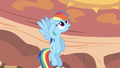 Rainbow Dash not sure S2E20.png