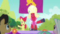 Apple Bloom and Orchard Blossom cheering out of sync S5E17.png