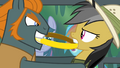 Thug trying to pull the ring away from Daring Do S4E04.png