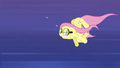 Fluttershy straining to keep up S2E22.png