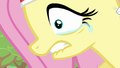 Fluttershy sucking tears in S2E22.png