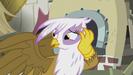 "Gilda ""the first nice thing anygriffon's ever said to me!"" S5E8"