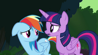 "Twilight and Rainbow ""more going on here than meets the eye"" S4E04"