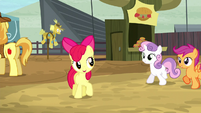 "Apple Bloom ""if we can get into some of these events"" S5E6"