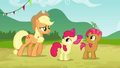 Apple Bloom and Babs sees Applejack S3E08.png