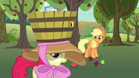 Apple Bloom failing to catch apples in her bucket S7E9