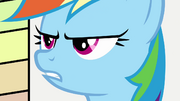 Noticing Fluttershy's absence S2E22