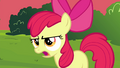 "Apple Bloom ""Wow, that's"" S4E15.png"