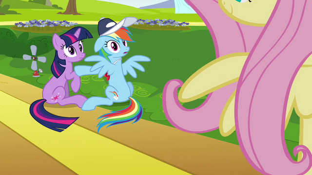 File:Rainbow Dash & Twilight see Fluttershy S2E22.png