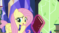 """Fluttershy """"where there's nature"""" S5E23.png"""