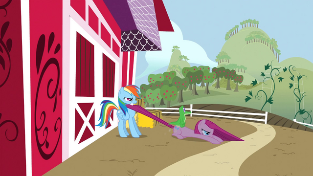 File:Rainbow Dash drags Pinkie Pie to the farm S1E25.png
