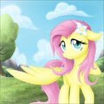 Fluttershy with wonders