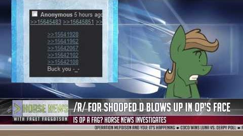 Horse News - Rekt edition
